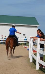horseprogram